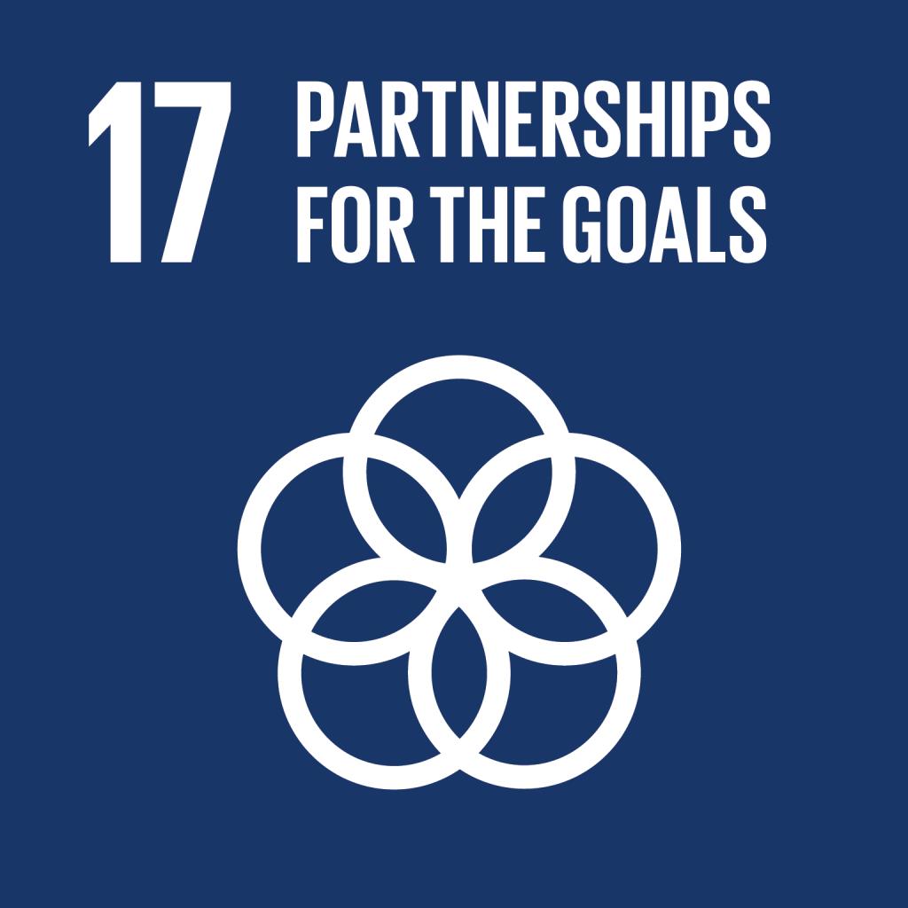 SDG 17 Partnerships for the Goals